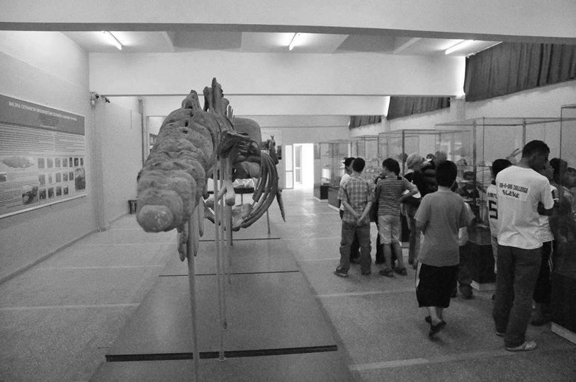 Müze GEZİSİ-2