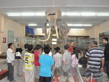 Müze GEZİSİ-3